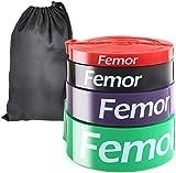 Femor Bandas con 4 Niveles de Resistencia